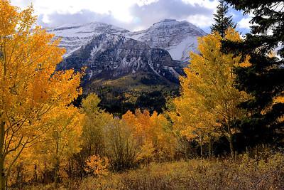 Mt. Timpanogos, Midway, Utah